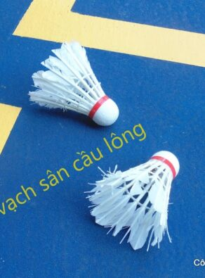 Son-san-cau-long